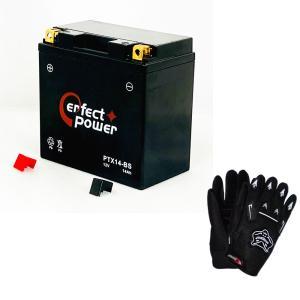 【グローブ付】 PERFECT POWER PTX14-BS...