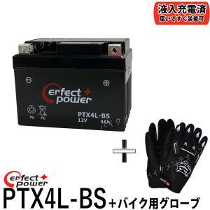 【グローブ付】 PERFECT POWER PTX4L-BS...
