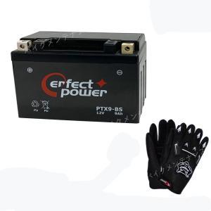 【グローブ付】 PERFECT POWER PTX9-BS ...