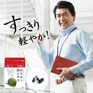 お試し価格 送料無料 はちみつ梅エキス 1袋(45粒)梅肉エキス 梅エキス