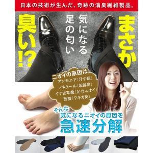 ブリーズブロンズ インソール メンズ レディース 消臭 靴|bakaure-onlineshop|04