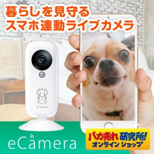 セキュリティカメラ イーカメラ eCamera 防犯カメラ ネットワークカメラ 小型 ペットカメラ 監視カメラ ワイヤレス スマホ ペット カメラ 留守 見守り|bakaure-onlineshop