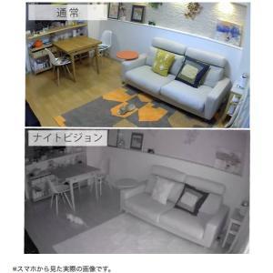 セキュリティカメラ イーカメラ eCamera 防犯カメラ ネットワークカメラ 小型 ペットカメラ 監視カメラ ワイヤレス スマホ ペット カメラ 留守 見守り|bakaure-onlineshop|13