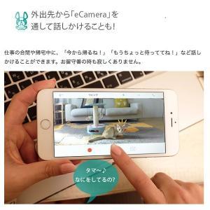 セキュリティカメラ イーカメラ eCamera 防犯カメラ ネットワークカメラ 小型 ペットカメラ 監視カメラ ワイヤレス スマホ ペット カメラ 留守 見守り|bakaure-onlineshop|18