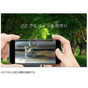 セキュリティカメラ イーカメラ eCamera 防犯カメラ ネットワークカメラ 小型 ペットカメラ 監視カメラ ワイヤレス スマホ ペット カメラ 留守 見守り|bakaure-onlineshop|05