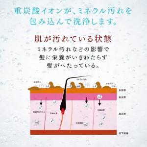 重炭酸 入浴剤 薬用 長湯ホットタブ Hottab 10錠 入り ホットタブ 乾燥肌 塩素除去 保湿 薬湯 無添加|bakaure-onlineshop|12