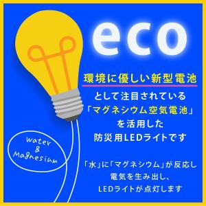 フォリザライト LED led 震災対策 非常灯 防災 災害 グッズ アウトドア ライト 懐中電灯|bakaure-onlineshop|07