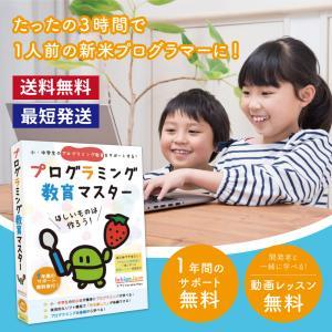 プログラミング教育マスター Win Mac 対応 小学3年生以上対象 プログラミング 学習キット IchigoJam 小学生 基礎 入門 タイピング 学習|bakaure-onlineshop