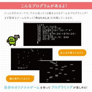 プログラミング教育マスター Win Mac 対応 小学3年生以上対象 プログラミング 学習キット IchigoJam 小学生 基礎 入門 タイピング 学習|bakaure-onlineshop|04