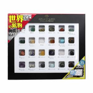 触れる図鑑 世界の石 宝石 工作キット 実験キット 自由研究 小学生工作キット