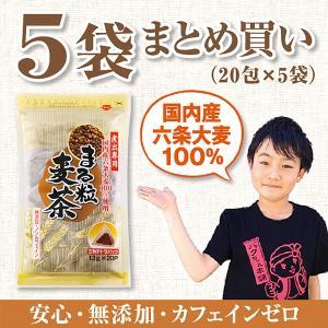 国産 六条大麦を100%使用:まる粒麦茶パック 13g×20P×5袋 煮出し 無添加/ノンカフェイン