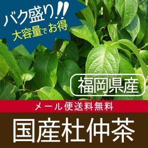 バク盛り 国産杜仲茶 福岡県産100%の特選茶葉 300g(3g×100包【目安包数】)【メール便送料無料・代引き不可】