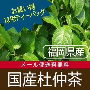杜仲茶 国産 健康茶 5g×50p ドカ盛り(メール便送料無料・代引き不可)の画像
