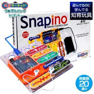 自分で作った電子回路をプログラミングで制御し、基本的なプログラミングスキルを身に付けられる 小学校で...
