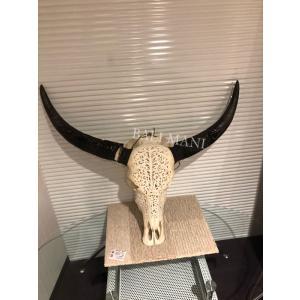 バリで直接買い付けてきたバッファローの頭蓋骨のオブジェです。  オブジェ 材質:バッファロー頭蓋骨・...