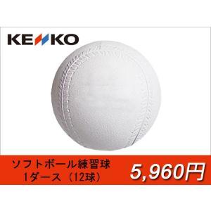 ナガセケンコー ソフトボール用 練習球(スリケン) 2号球・3号球 1ダース(12球入り)