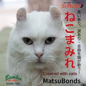 【CDアルバム】MatsuBonds「ねこまみれ」(2019/06/12発売)|bambee-records