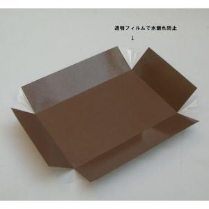 お弁当に敷いて安心 6H用耐水中仕切 (サイズ169x108x45mm)本体サイズ180x120x50mmの商品に対応の中仕切