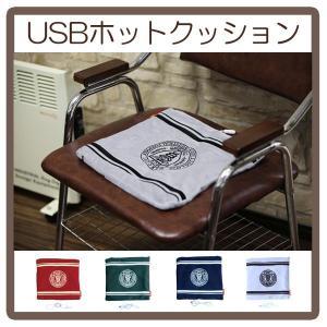 デライト USBホットクッション|bandblife