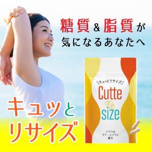 キュッとリサイズ 糖質対策 脂質対策 油分吸着型キトサン ギムネマ サラシア 厳選素材 国内生産 ダイエットサプリメント|bandh