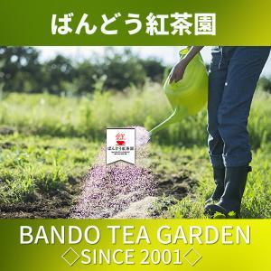 生姜紅茶 (しょうが紅茶) 120 ティーバッグ(2.5g×60TB)×2袋 日本産 無添加 無糖 無香料 bandokochaen 15