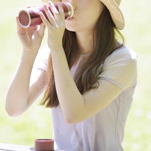 ( ノンカフェイン ) 生姜紅茶 (しょうが紅茶) 120ティーバッグ(2.5g×60TB)×2袋 無添加 無糖 無香料|bandokochaen|05