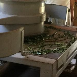 ( ノンカフェイン ) 生姜紅茶 (しょうが紅茶) 120ティーバッグ(2.5g×60TB)×2袋 無添加 無糖 無香料|bandokochaen|09