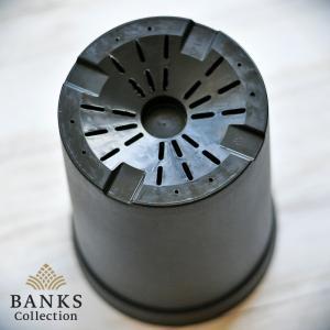 BC プラスチック製ロングポット(大)6個セット バンクスコレクション|bankscollection|02