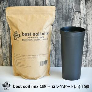 観葉植物用培養土 BC best soil mix 1袋 +ロングポット(小) 10個 bankscollection