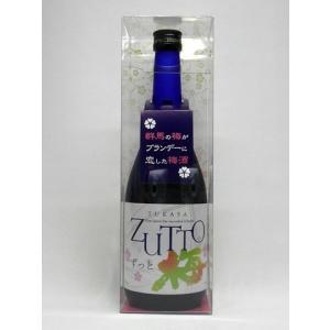お中元 梅酒 TUKASA ZUTTO つかさ ずっと 720ml 美峰酒類