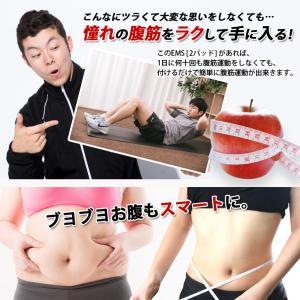 EMS 交換用2 パッド ジェルパッド  腹筋 トレーニング エクササイズ シェイプアップ 運動 ダイエット バタフライパッド 男性 女性 送料無料 |baris|02