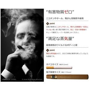 電子葉巻 電子タバコ 使い捨て 1800回程度吸引 送料無料 【メール便・代引不可】|baris|03