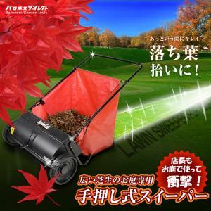 Agri-Fab 芝生専用手押し式スイーパー(掃...の商品画像