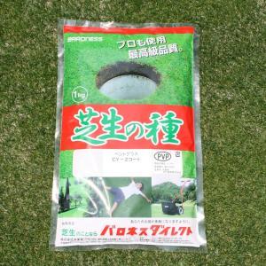 芝 芝生 種 寒地型芝 ニュークリーピングベン...の詳細画像1