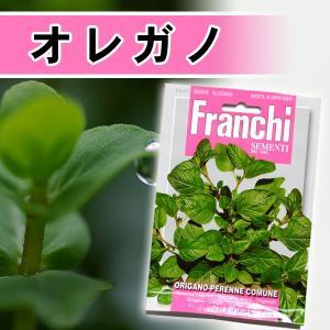 /メール便/ハーブの種 オレガノ(花薄荷) イタリア FRANCHI社|baroness