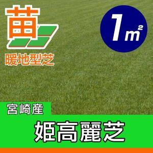/代引不可/送料込み/姫高麗芝(張り芝用) 宮崎産 1平米(0.3坪分) 園芸|baroness