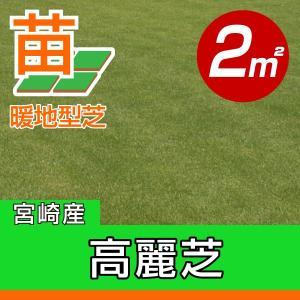 /代引不可/送料込み/高麗芝(張り芝用) 宮崎産 2平米(0.6坪分) 園芸|baroness