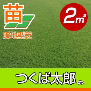 /代引不可/つくば太郎(野芝)(張り芝用) つくば産 2平米(0.6坪分) 園芸|baroness
