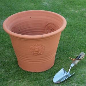 英国 ウィッチフォード イングリッシュローズ ポット 直径35センチ(約11.5号鉢)のテラコッタ/送料無料/|baroness