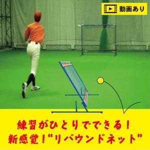 ニッシンエスピーエム 硬式 軟式 ソフトボール 対応 リバウンドネット NN400 野球 ベースボール ネット 壁当て 守備練習 練習用 送料無料 送料込み|baseballparkstandin