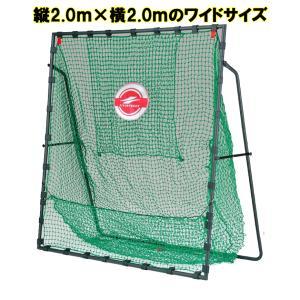 FBN-2020H2 硬式バッティングネット ソフトボール対応バッティングネット  ティーバッティング ※送料無料  (沖縄・離島は除く)|baseballpower