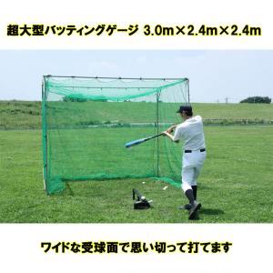 FBN-3024N2 バッティングゲージ 軟式用 大型  大型バッティングネット ティーバッティング練習 ※送料無料(沖縄・離島除く)|baseballpower