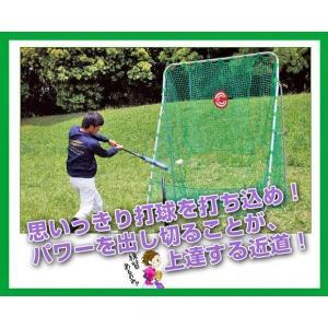 FBN-2620N2+FBT-320 軟式 バッティングネット ハイ&ワイド+バッティングテイー 打撃 練習器具  野球 上達器具 ※送料無料(沖縄・離島除く) baseballpower