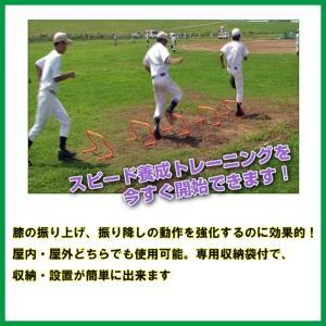 ミニハードル FMH600  baseballpower
