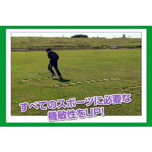 ラダー FST600RN|baseballpower