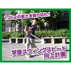 トレーニングバット 1.2kg 学童 素振り用 FTB-120N 野球 打撃 練習器具 野球 練習器具|baseballpower