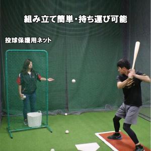 投球保護用ネット FTHN-1890N2 バッティング練習用防御ネット 防球ネット