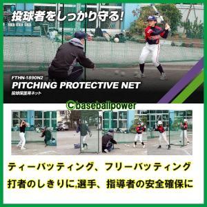 FTHN-1890N2  投球保護用ネット バッティング練習用防御ネット 防球ネット ※送料無料(沖縄・離島除く) baseballpower 02