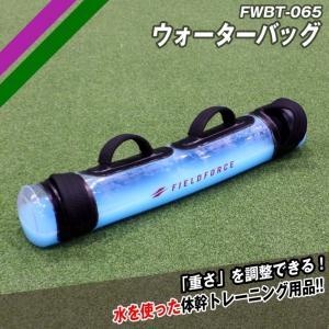 体幹トレーニングに  FWBT-065  ウォーターバック baseballpower