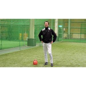ダイヤモンドグラブ・ベストナインの名プレーヤー 水上 善雄 野球内野手編DVD|baseballpower